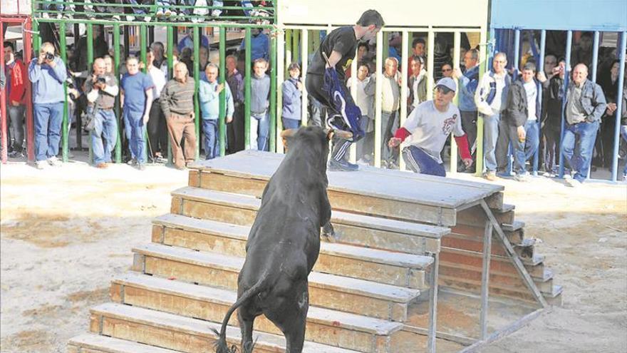 Los toros, absolutos protagonistas de la fiesta mayor de Els Ibarsos