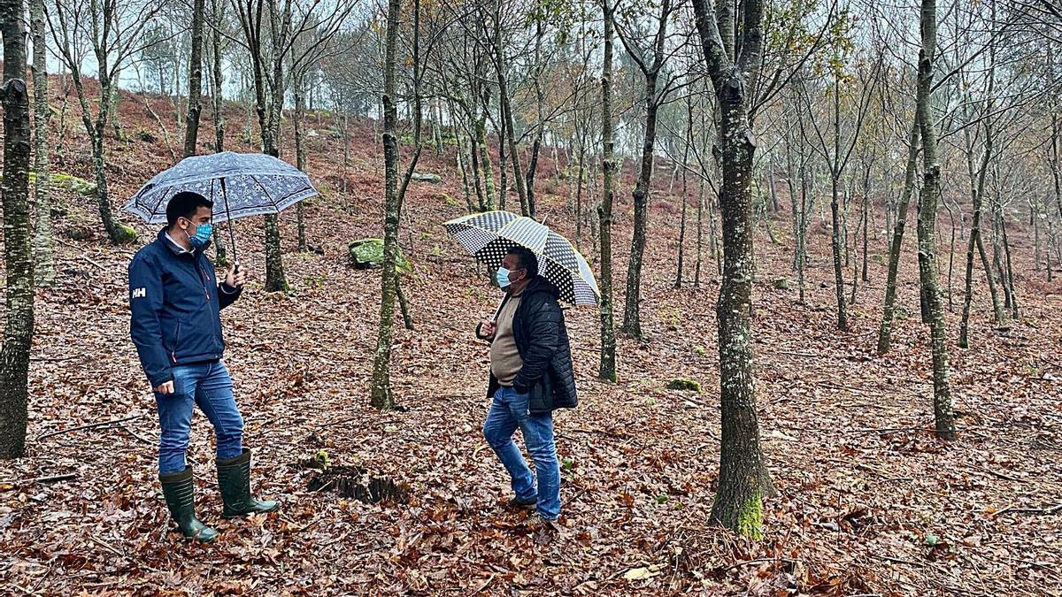 El concejal y el presidente de la Comunidad de Montes en este espacio forestal.   | // FDV