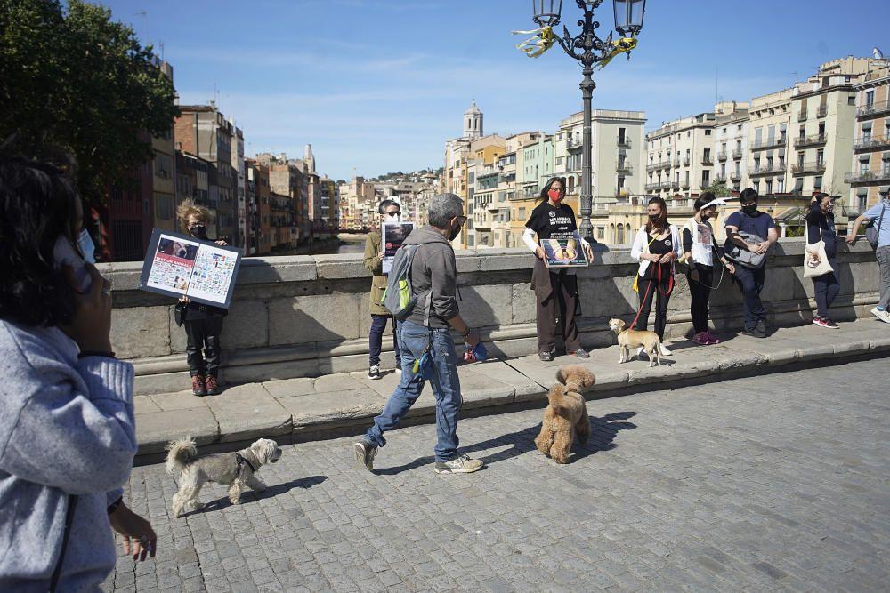 Concentració a Girona per reclamar l'alliberament dels animals de Vivotecnia de Madrid