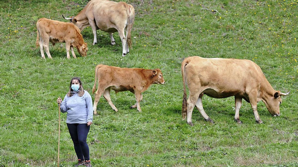 Un mujer con su explotación de ganado vacuno en A Estrada. |   // BERNABÉ / JAVIER LALÍN