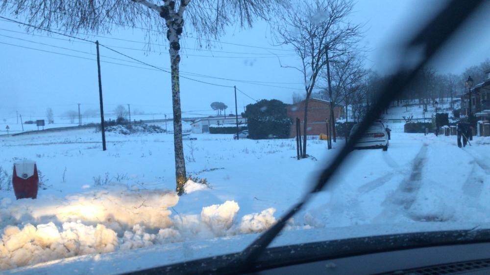 Neu a L'Estany