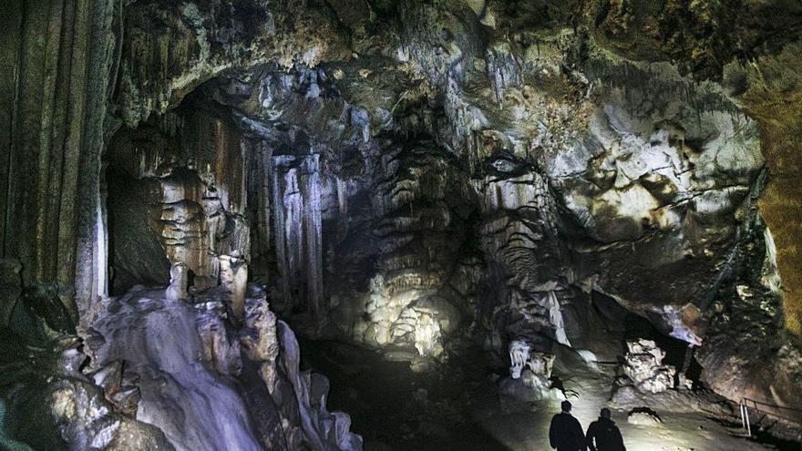 Pasaporte al Paleolítico