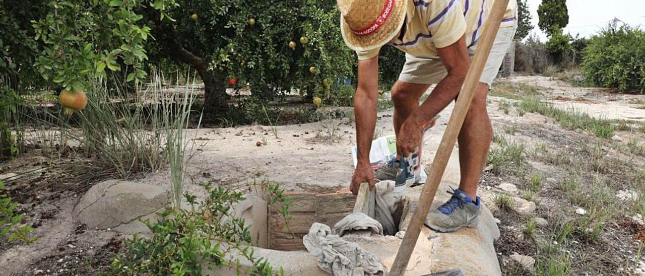 Una agricultor ilicitano prepara sus tierras para recibir este martes agua del Tajo.   ANTONIO AMORÓS