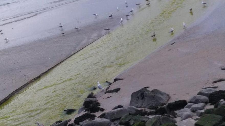 Así de verde desembocó el río Bouzós en el mar