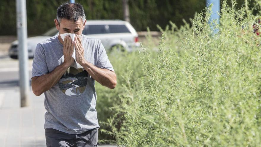 Una primavera atípica para los alérgicos al polen