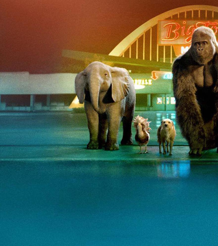 Disney lanza el primer tráiler de 'El magnífico Iván'