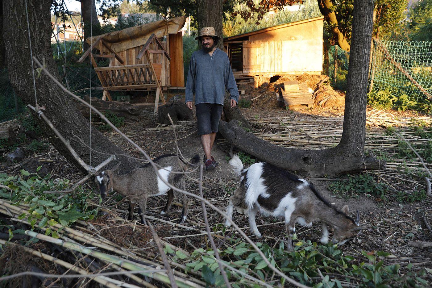 xulián martínez con sus cabras desbrozadoras_grobas (8).jpg