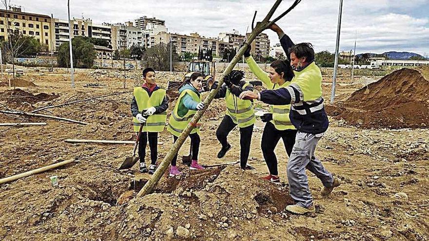 Alumnes de Secundària planten arbres al bosc urbà del canòdrom de Palma