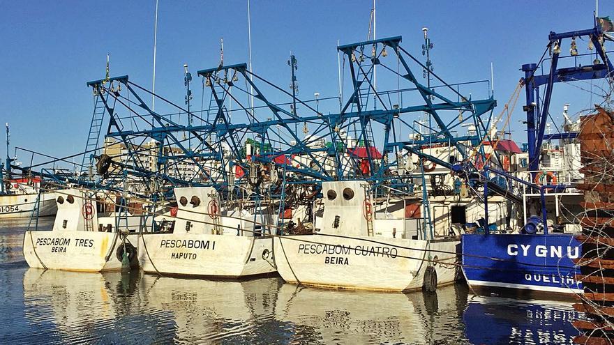 Pescanova reforzará capital con 50 millones: la antiguos socios podrán retener su estatus