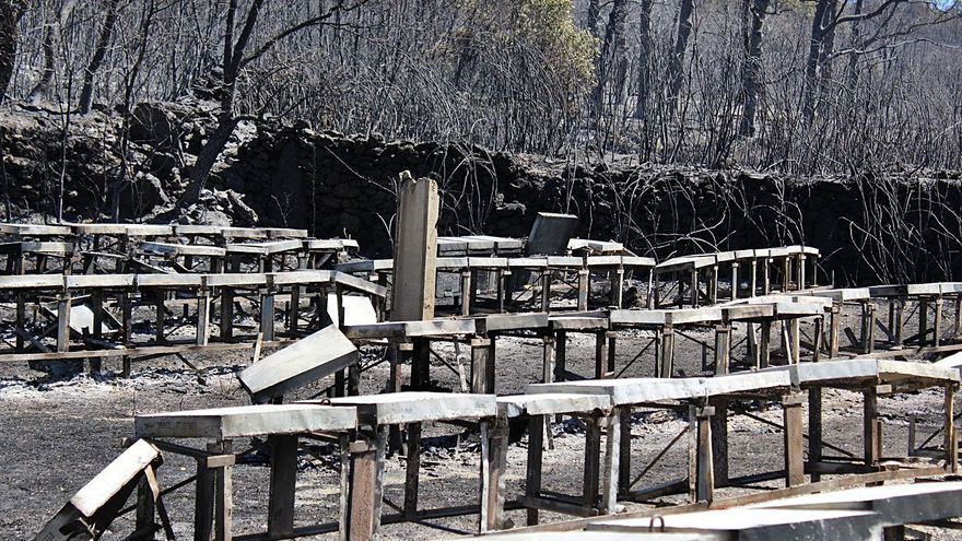 El incendio de Asturianos deja cuantiosas pérdidas en robles, castaños y colmenas