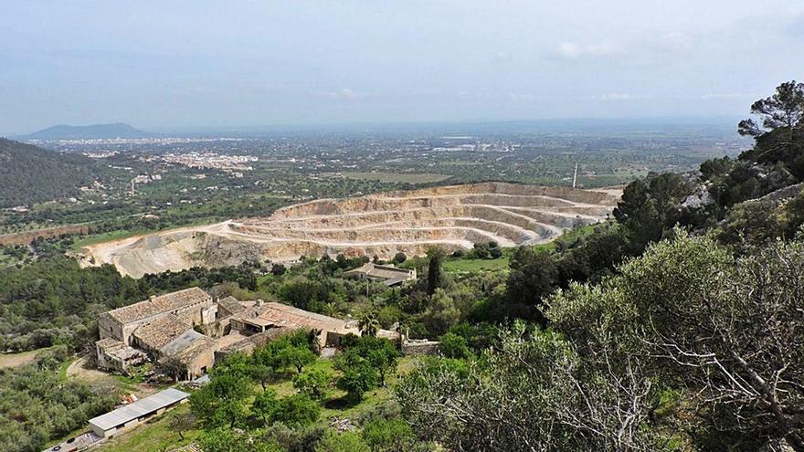 Desaparecen los nidos de milano real en el entorno de la cantera explotada por Cemex