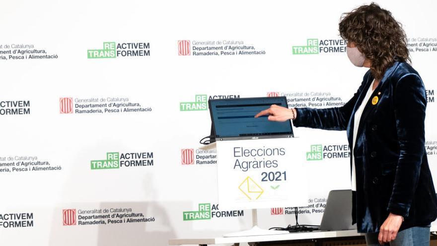 Incidències informàtiques dificulten el desenvolupament de les eleccions agràries