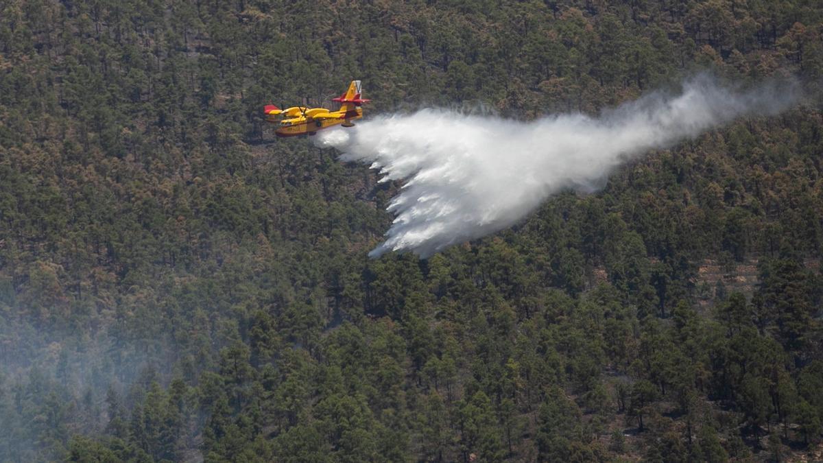 Labores de extinción del incendio forestal de Arico