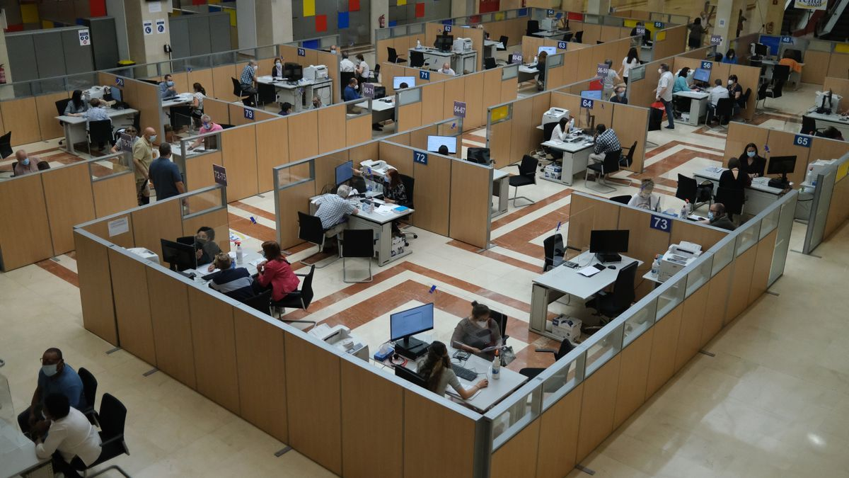 Empleados atienden a contribuyentes de manera presencial en Madrid.