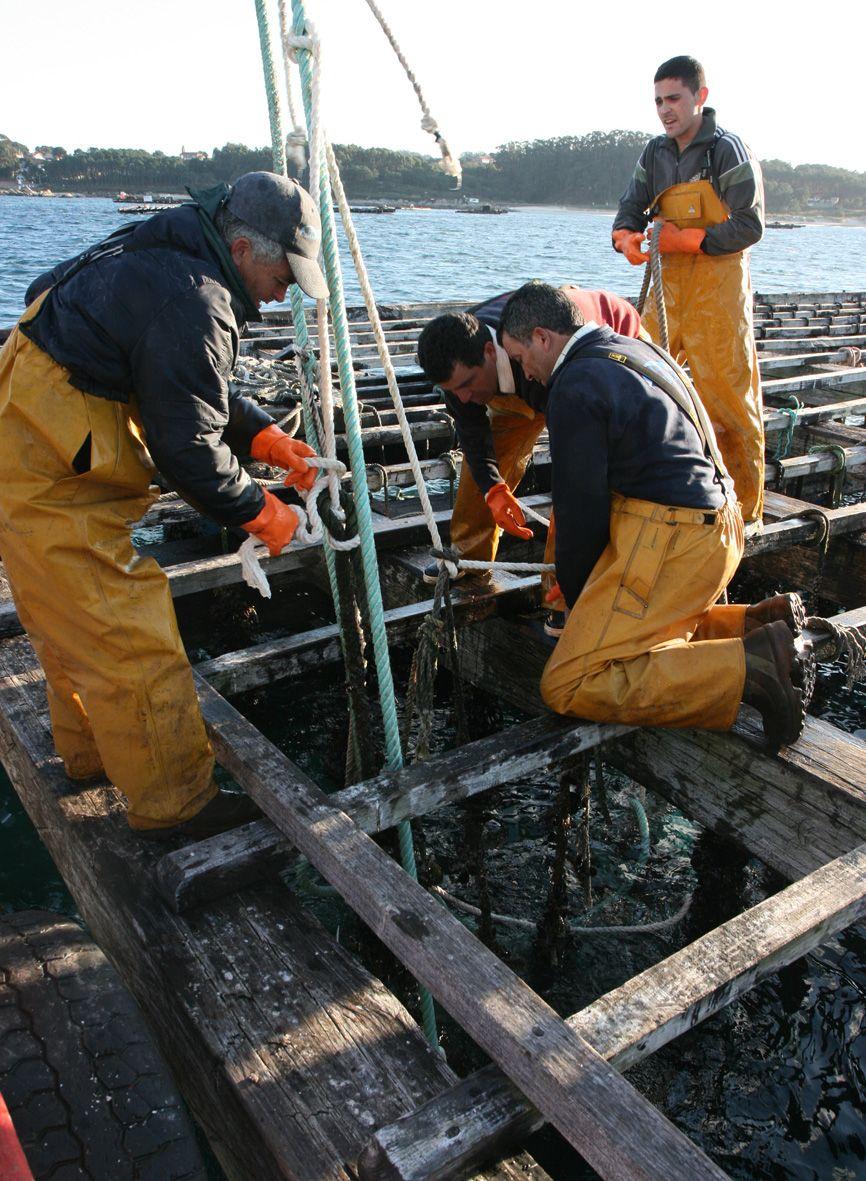 Bateeiros intentando recuperar cuerdas cortadas tras los sabotajes ocurridos en 2008.