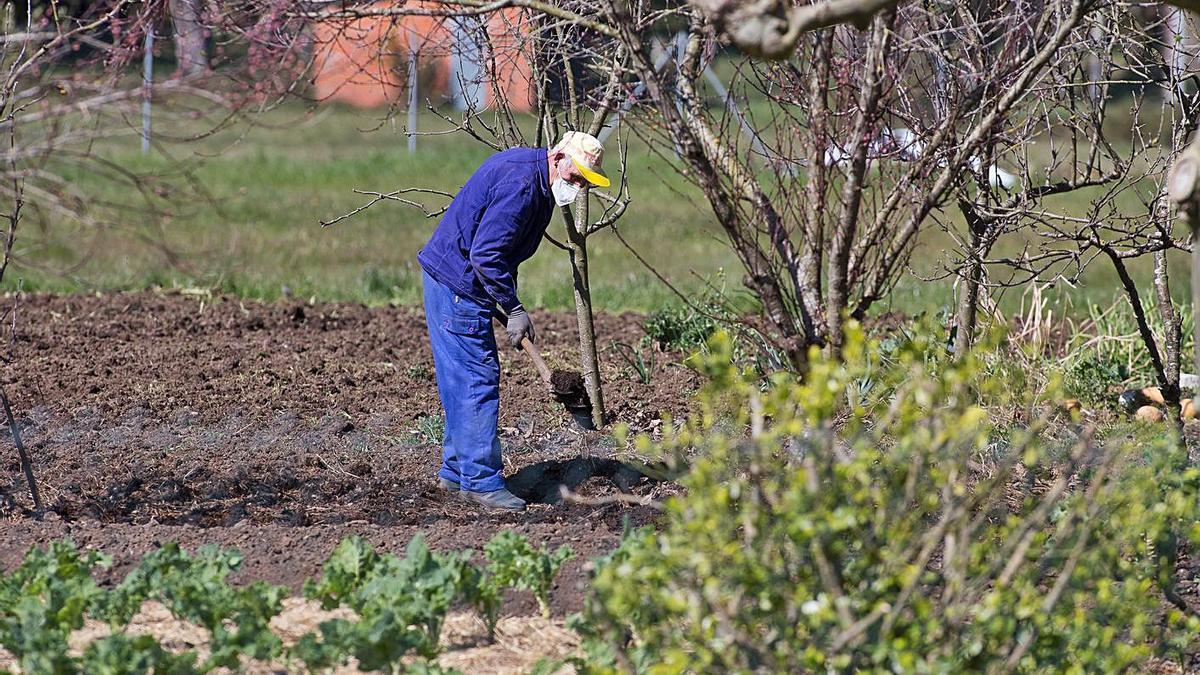Un agricultor trabaja la tierra en una imagen de archivo.
