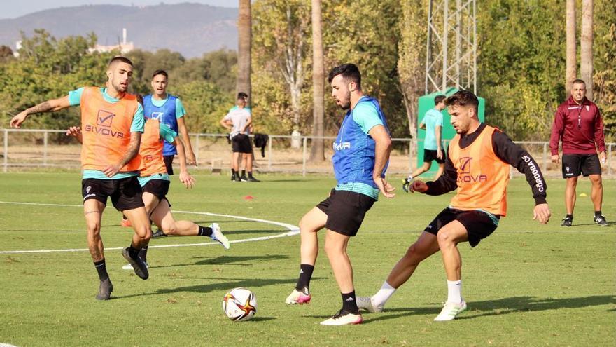 El Córdoba CF, a dar el último paso a la Copa del Rey