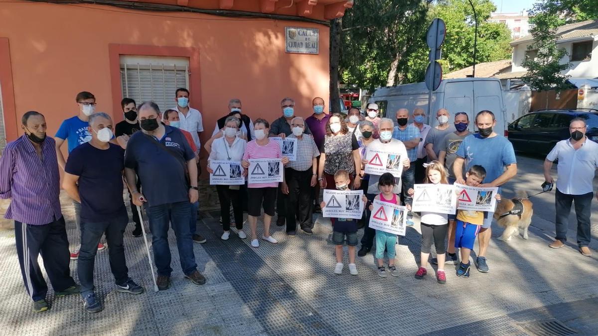 Los vecinos del barrio de La Jota alertan del peligro del arbolado del distrito