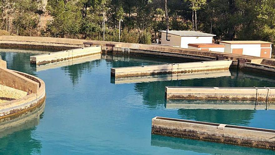 La Emshi opta a 81 millones de Europa para mejorar el ciclo integral del agua