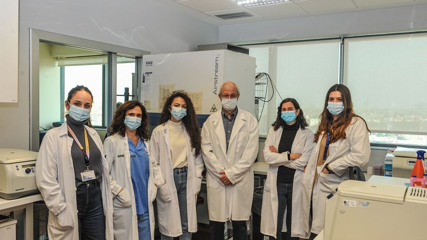 El nuevo sistema para el diagnóstico de covid de la UPV está listo para ensayos en muestras clínicas