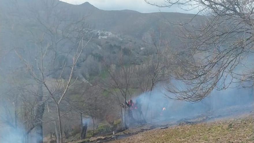 Extinguido un incendio forestal en Hermisende
