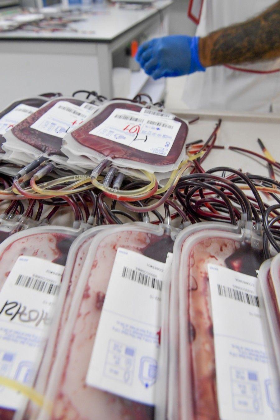 Almacenamiento de las donaciones de sangre en el ICHH