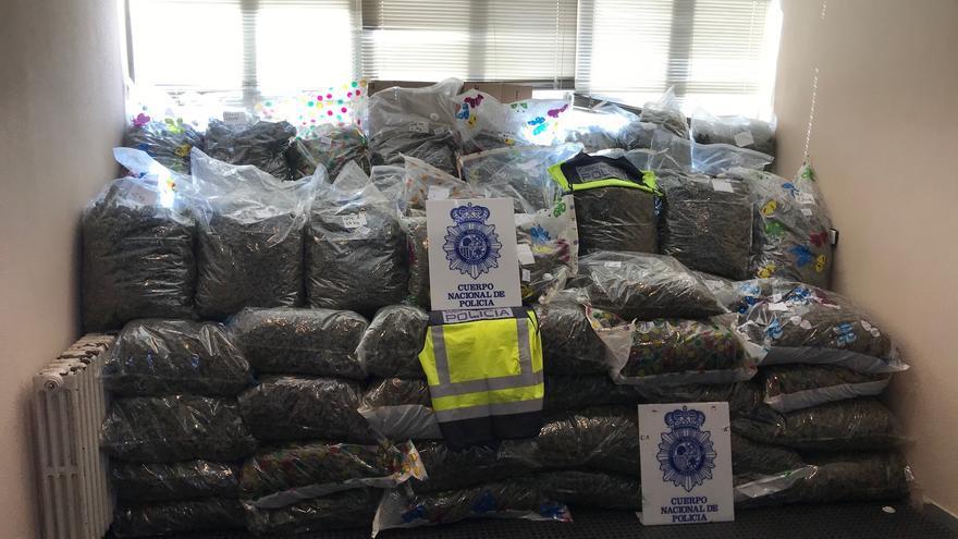 Intervienen 355 kilos de cogollos de marihuana a una organización internacional con fuerte asentamiento en València