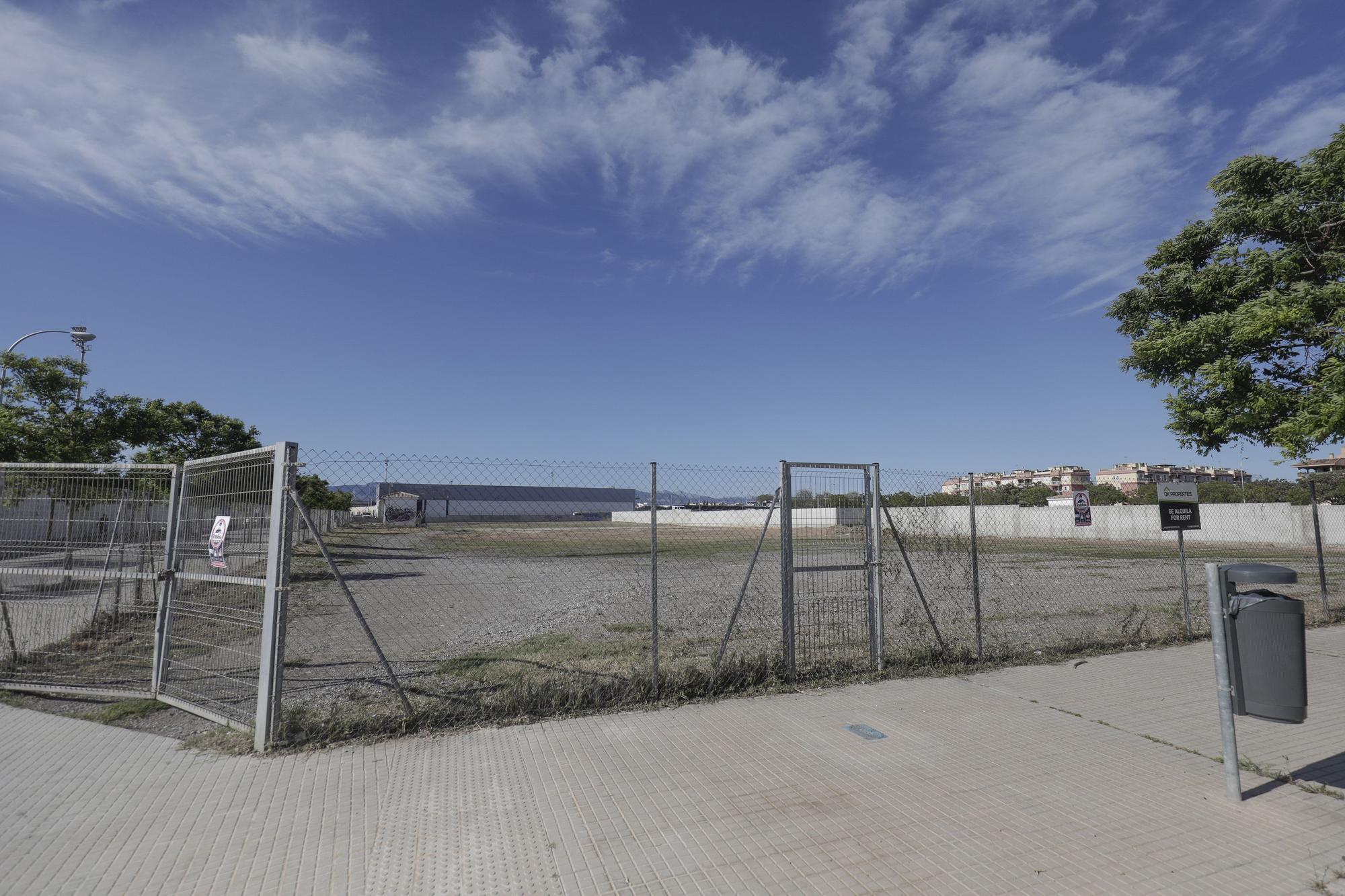 Así es el solar donde se montará el primer autocine de Palma