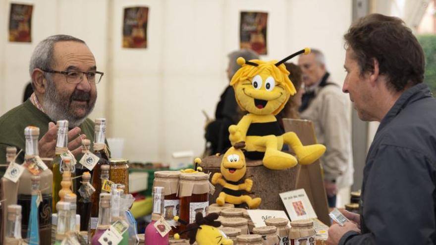 Los apicultores demandan medidas para proteger las abejas en defensa del clima