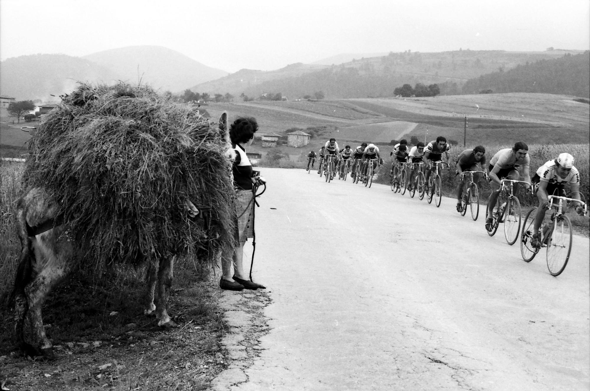 Burro con su carga al paso de los esforzados de la ruta. h. 1970
