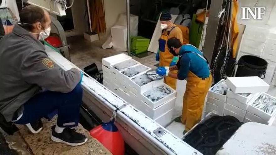 El precio del pescado azul se multiplica en la lonja al acogerse la flota de cerco a los ERTE