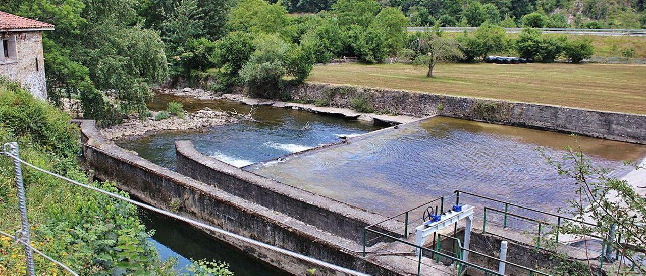 La zona donde se capta el agua para el canal de Coruxera, en El Condao (Laviana), donde una avería en el medidor de caudales hizo que se recortase el volumen de agua del río Nalón.