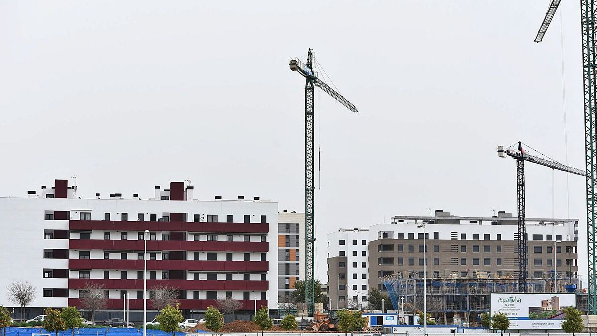 Varios pisos construidos y otros en construcción en la zona de la Huerta de Santa Isabel.