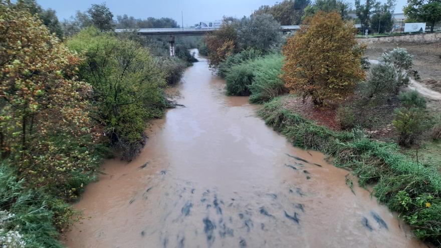 Arranca el plazo para que los ayuntamientos de la Ribera afectados por las tormentas pidan ayudas del estado