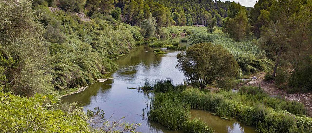 Arriba, senderos en el término de l'Olleria. A la derecha, el río Albaida.
