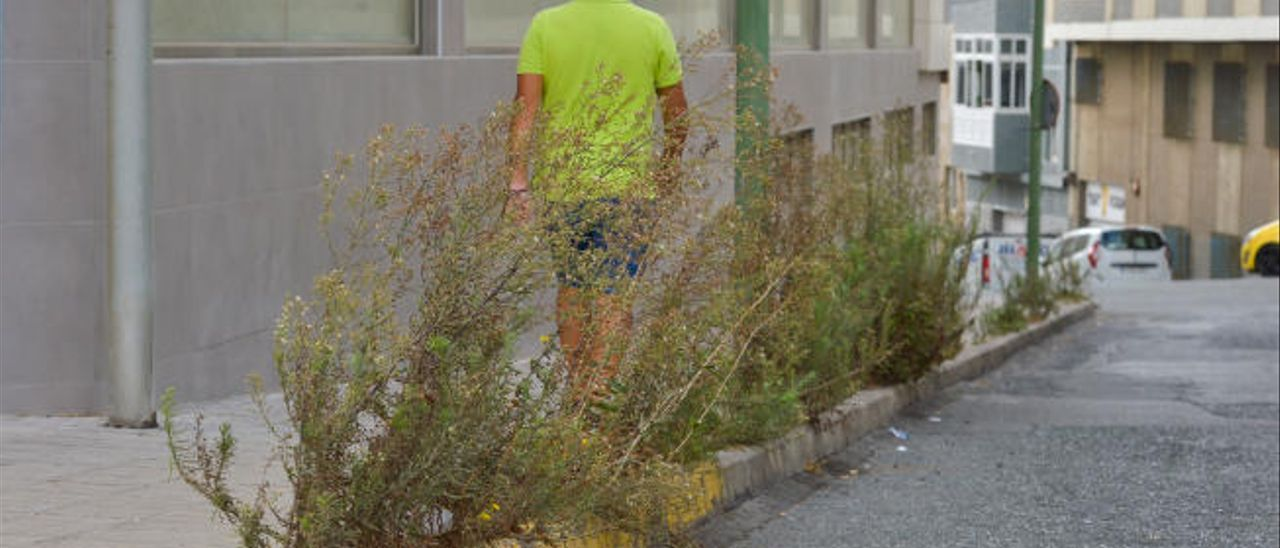 Un hombre circula por una acera invadida por las malas hierbas.