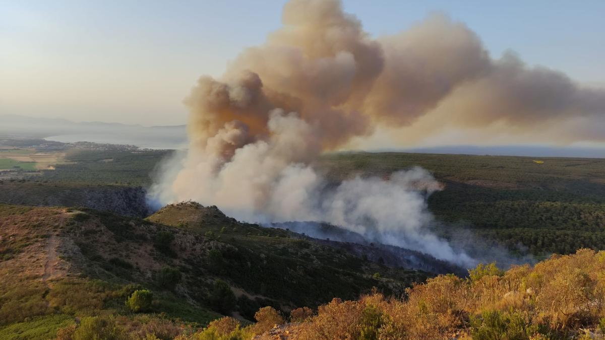 Aspecte d'un incendi al massís del Montgrí, a Torroella de Montgrí