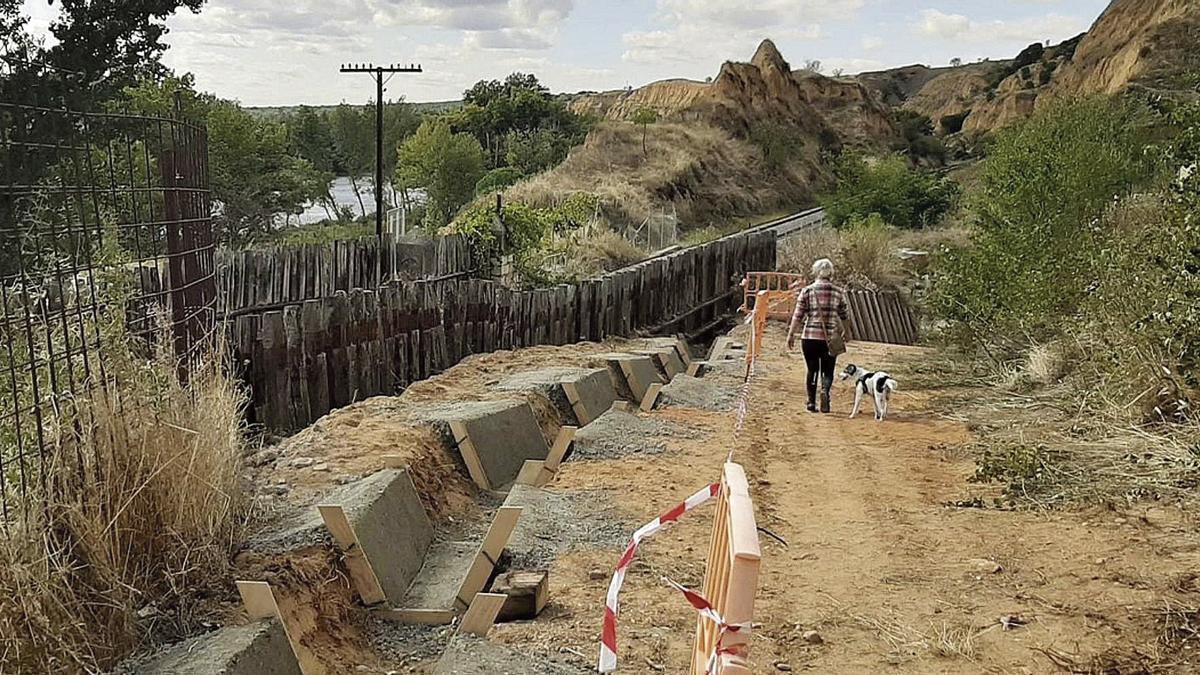 Una vecina pasea con su perro por el paraje en el que se están ejecutando las obras de reforma del paso bajo la vía férrea.