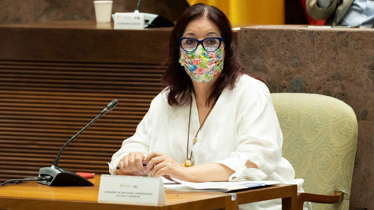 Manuela Armas durante su comparecencia.