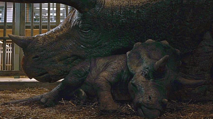 'Jurassic World 3' presenta a su nuevo y adorable dinosaurio