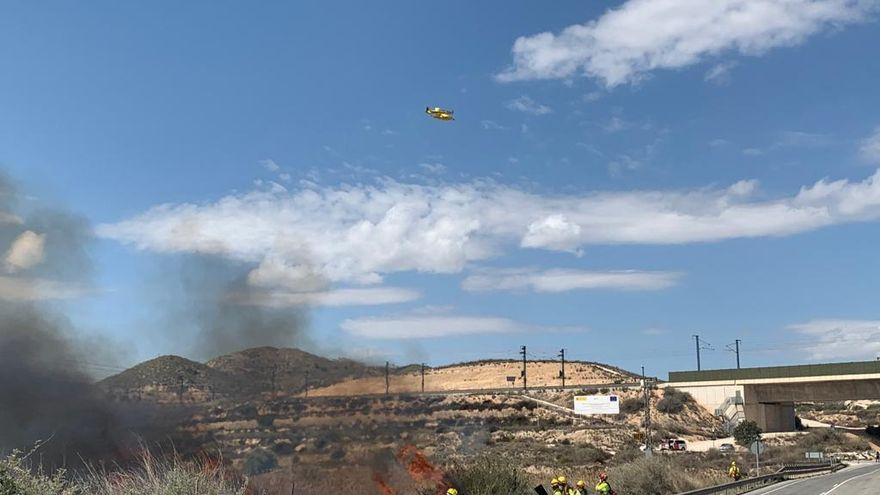 Incendio de cañaveral en la zona del Castillo del Río en Aspe