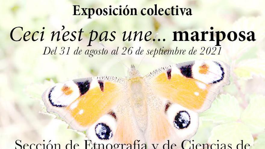 El Museo de Etnografía y Ciencias de Jumilla acoge la exposición colectiva 'Ceci n'est pas une... mariposa'