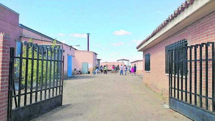 """Obras ejecuta el aislamiento de los techos del """"refugio""""  para animales abandonados"""