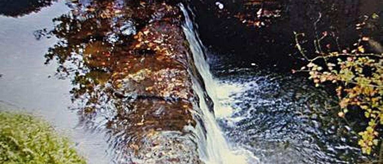 El obstáculo que se pide eliminar en el río San Silvestre.