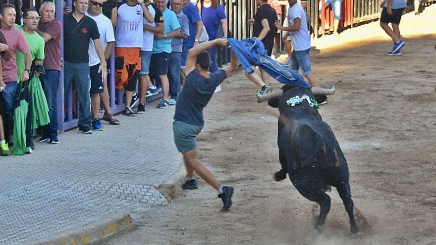 Agricultura mantiene la exclusión de los ganaderos taurinos de las ayudas