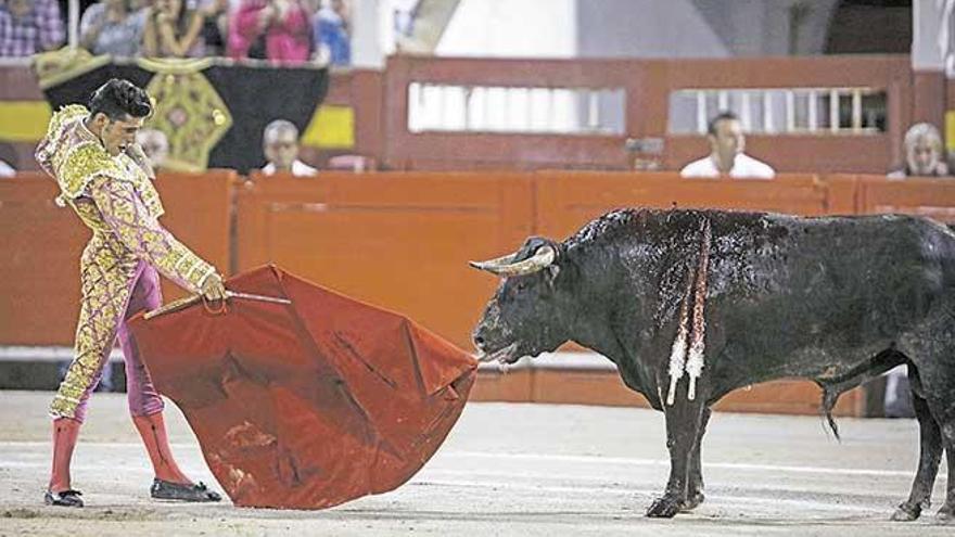 Stierkampf in Inca am Ostersonntag wird abgeblasen