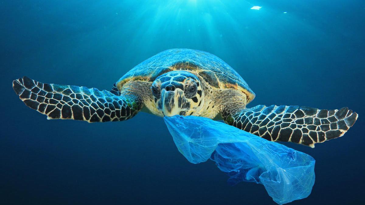 Los vertidos plásticos e industriales suponen una de las grandes amenazas para los océanos.
