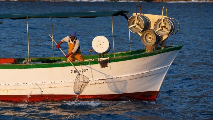 El reto de una pesca justa, más respetuosa y sostenible