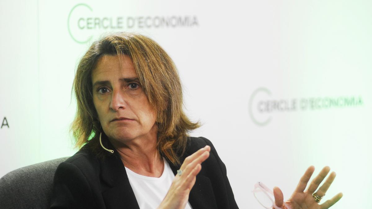 La ministra Ribera durante una charla.