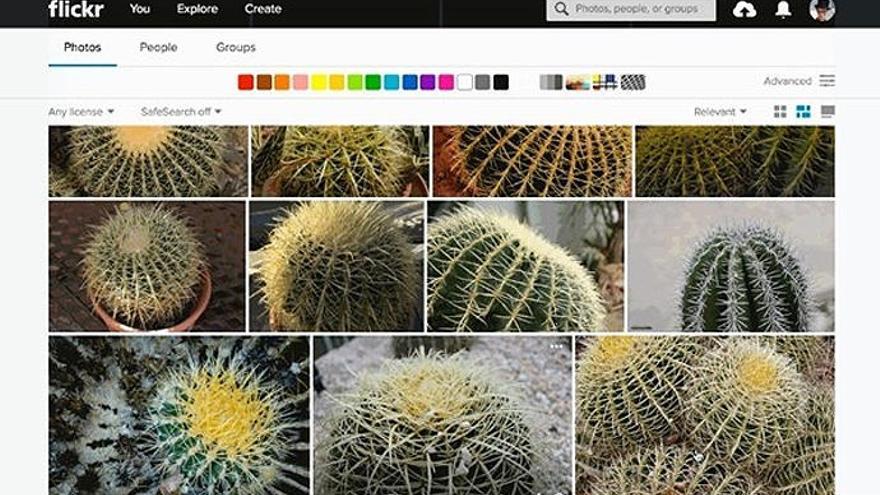 Flickr introduce la búsqueda de imágenes por similitud